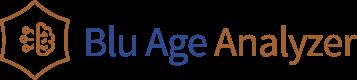 Blu Age Analyzer