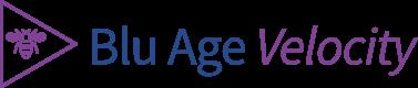 Blu Age Velocity Framework